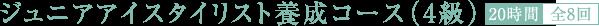 ジュニアアイスタイリスト養成コース(4級)